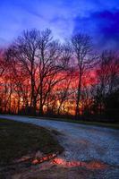 solnedgång väg foto