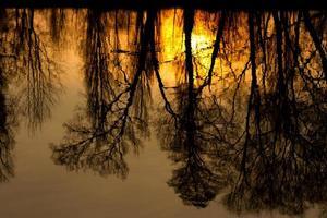 solnedgång reflektioner foto