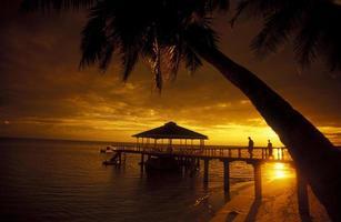 seychellerna praslin solnedgång foto