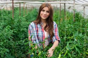 kvinnlig arbetare i växthus. foto