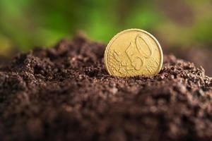 pengar tillväxt. foto