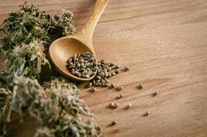 cannabisfrön och pengar
