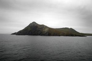 uddehorn, tierra del fuego, patagonien, södra Chile, Sydamerika. foto