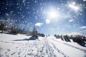 snöig stig på kullen foto