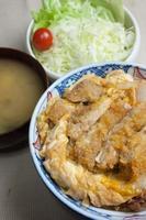 japansk mat katsudon