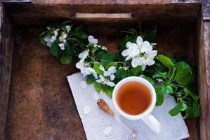 kopp grönt te och blomning foto