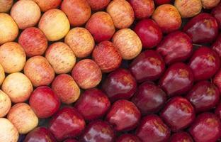 rött äpple foto