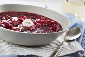 borscht soppa foto