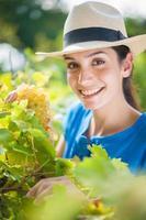 glad kvinna som plockar några druvor i trädgården foto