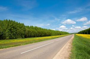 landsväg. väg under hösten foto