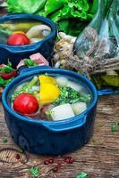 sommarsoppa med färska grönsaker