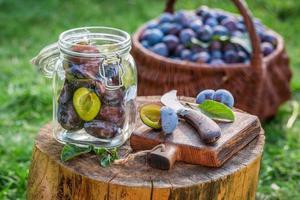 ingredienser för plommonkompott foto
