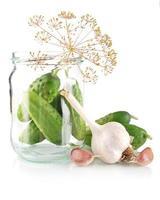 gurkor i burk förbereder för betning på vitt foto