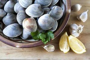 färska musslor foto