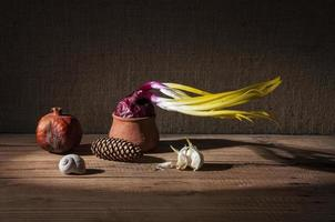 grodde lök och torkad granatäpple foto