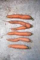 organiska morötter foto