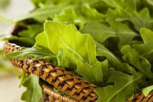 organisk rå grön rucola foto