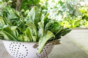 grönkålgrönsak (kinesisk broccoli) foto