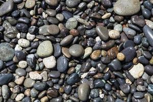 våta stenar foto
