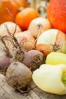 hemodlade grönsaker foto