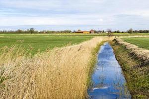 achterwasser i bruk vid det baltiska havet foto