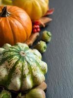 pumpor, ekollon, löv och bär