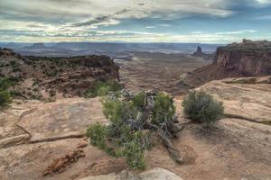 canyonlands national park foto