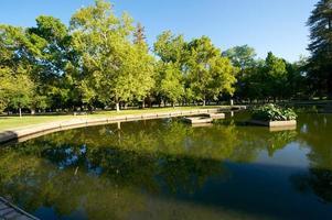 morgon i parken foto