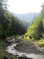 bergflod