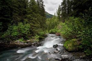flod forsar foto
