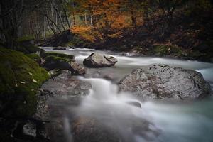 floden på hösten foto