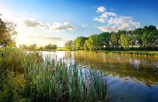 morgon vid floden foto