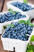 färska skördade blåbär foto