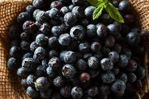 färska råa organiska blåbär foto