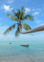naturbakgrund av havet med kokosnötpalmträd foto
