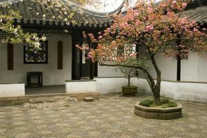 kinesisk innergård foto
