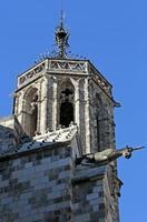 gargoyles, katedralen för det heliga korset, gotisk Barri, Barcelona, Spanien foto