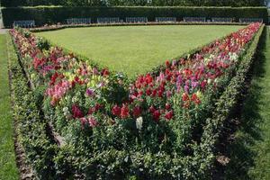 formell trädgård med vit bänkträdgård, St. petersburg foto