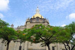 guadalajara katedral, jalisco (mexico) foto