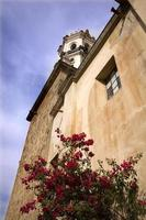 vit sten kyrka röd bouganvillea mexico foto