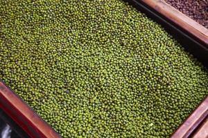 närbild många gröna bönor foto