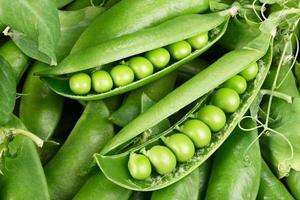 gröna bönor foto