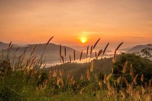 soluppgång landskap