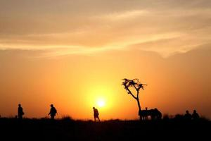 landskap solnedgång