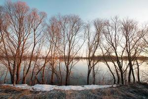 tidigt vårlandskap foto