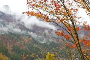 vinter bergslandskap