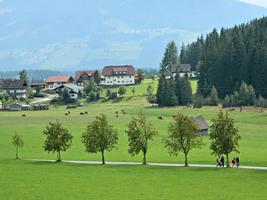 österrikiskt sommarlandskap foto
