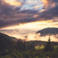 landskap med dimma