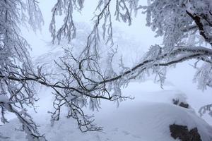 zen snöig landskap foto