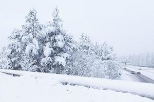 snölandskap och väg foto